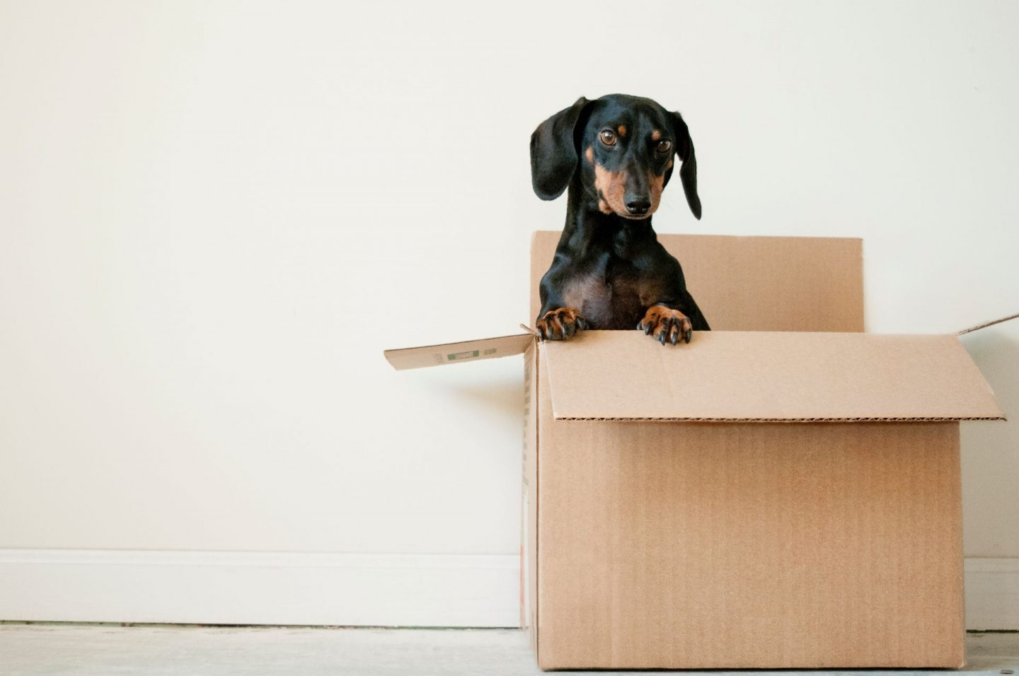 safety tips for moving house